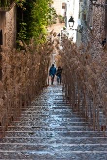 Temps de Flors 2013-Girona